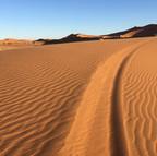 Volta a les dunes 02.jpg
