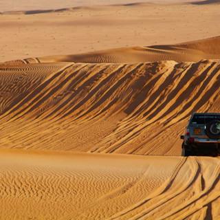 Volta a les dunes 07.jpg
