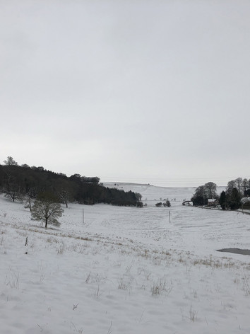 View from the garden in Winter.jpg