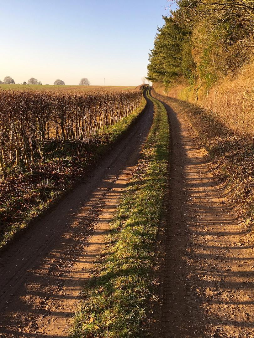 A walk in Great Durnford.jpg