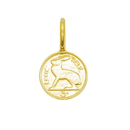 Gold 9 Carat Irish 3d Coin Charm