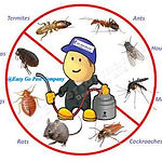 滅蟲公司,殺蟲公司_Pest Control