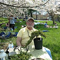 Maryland Bonsai Association member George Thoupos  demonstrates the making of a cascaded bonsai tree