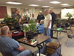 International Bonsai Instructor Mauro Stemberger critiques and discusses techniques to make to this bonsai tree
