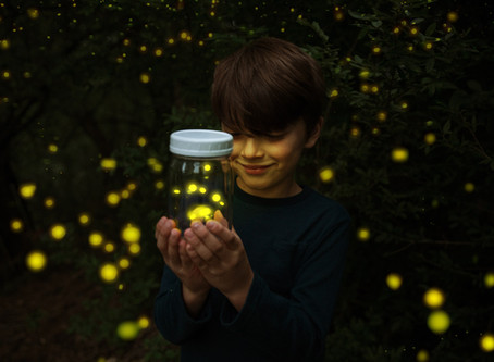 The Importance of Lightning Bugs to Building Your Brand