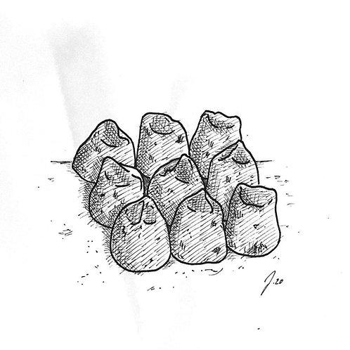 Tüte mit handgemachten Schokotrüffeln (enthält 10 Stk.)