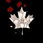 Logo CARYC.png
