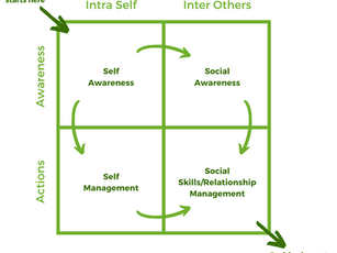 Goleman's Emotional Intelligence Model