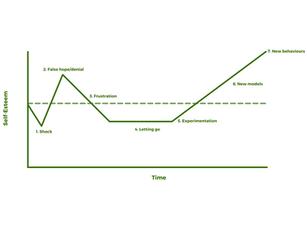 John Fisher's Change Curve