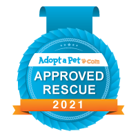 Approved-Rescue_Blue-Badge_Logo-Banner.p