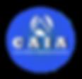 CAIA logo1.png