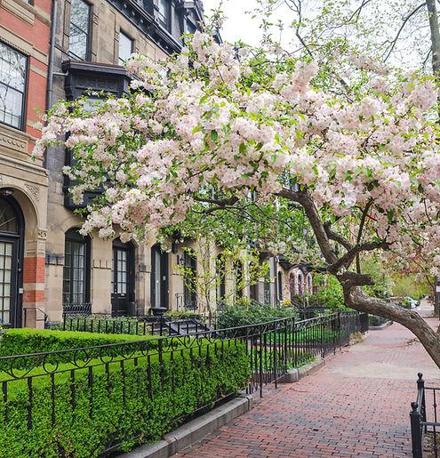 Boston in early spring, Massachusetts, U