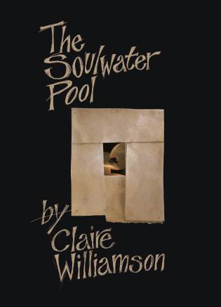 The Soulwater Pool (Poetry Can, 2008)