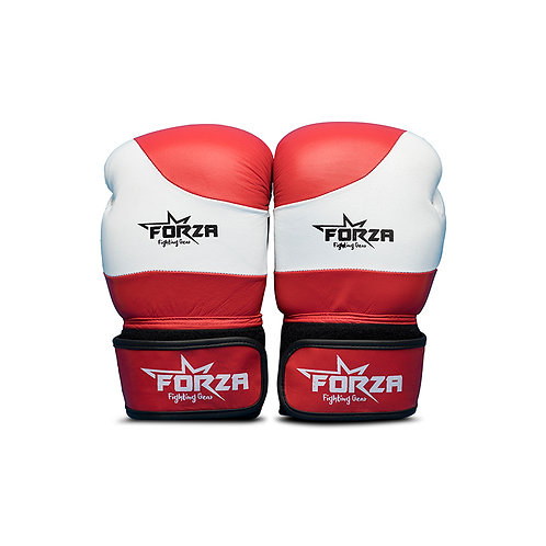 FORZA LEATHER BOXING GLOVES – WRECKS
