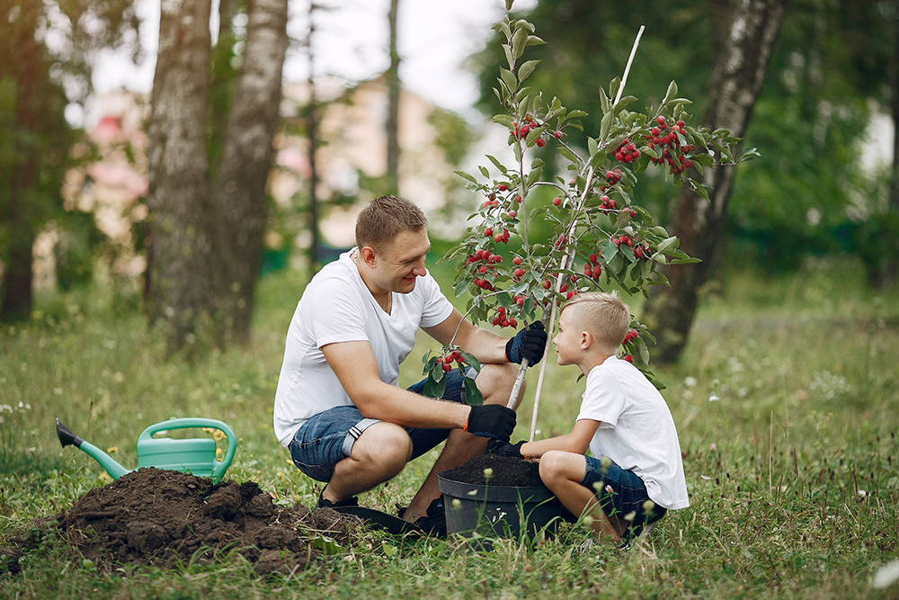 father-with-little-son-are-planting-tree