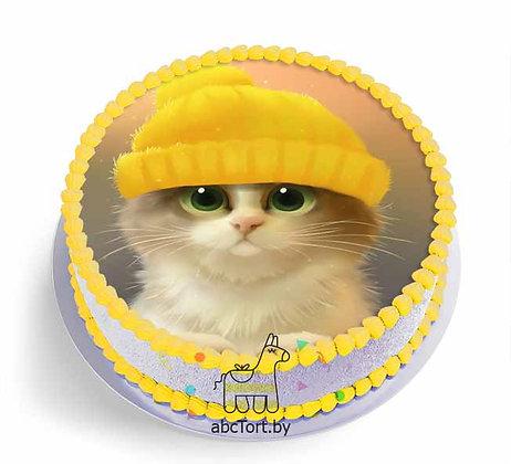 Торт на заказ - Котик