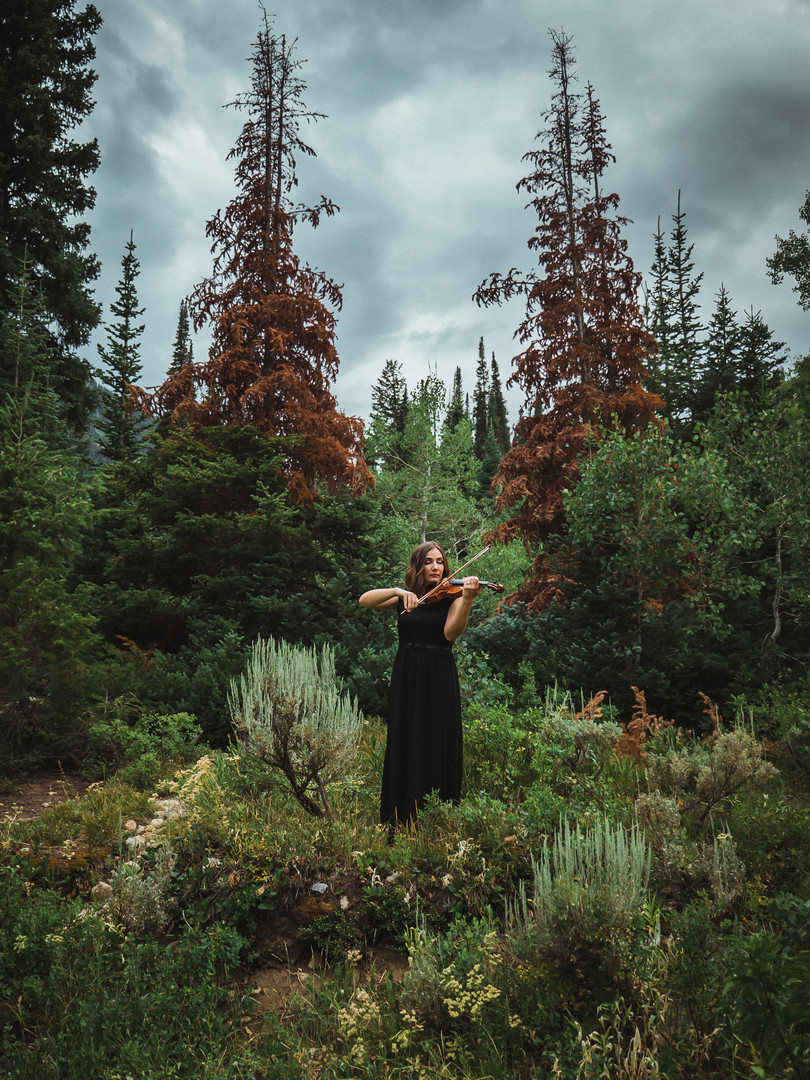 A beautiful violinist, Jessica McAllister, performs the violin in the mountains with a storm approaching.