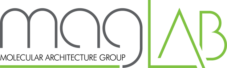 Mag-Lab logo wo background.png