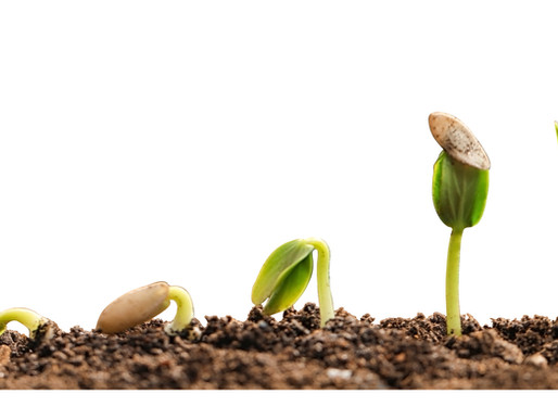 How incubators and accelerators help to overcome the challenges of biopharma entrepreneurship