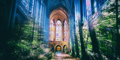 Forêt - Notre Dame de Pontmain
