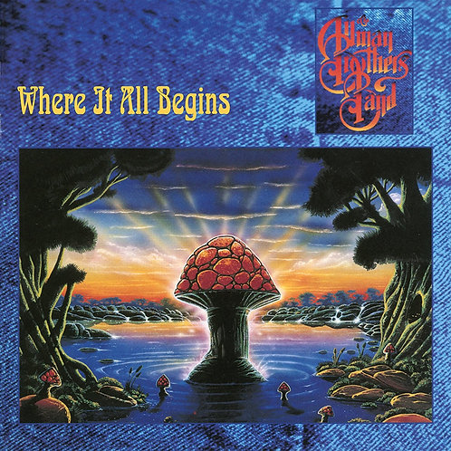 ALLMAN BROTHERS - WHERE IT ALL BEGINS