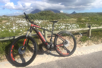 ebike-cape-cape-west-coast-meet-us-there
