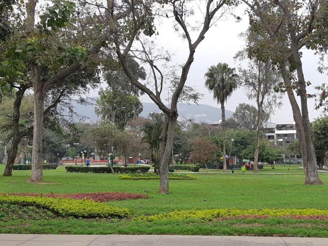 parque cesar vallejo 1100 x 825 a.jpg