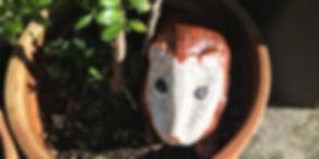 hedgehog in plant.jpg