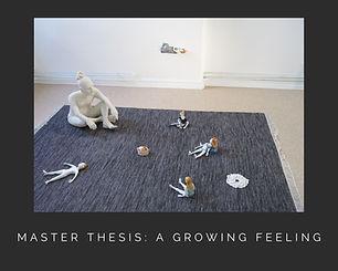 master thesis.jpg