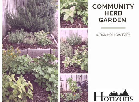 Community Herb Garden @OHP