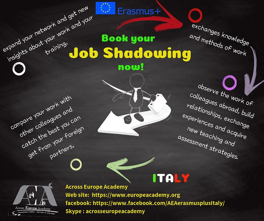Job Shadowing italy AEA.png