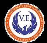 v.e.treinamento