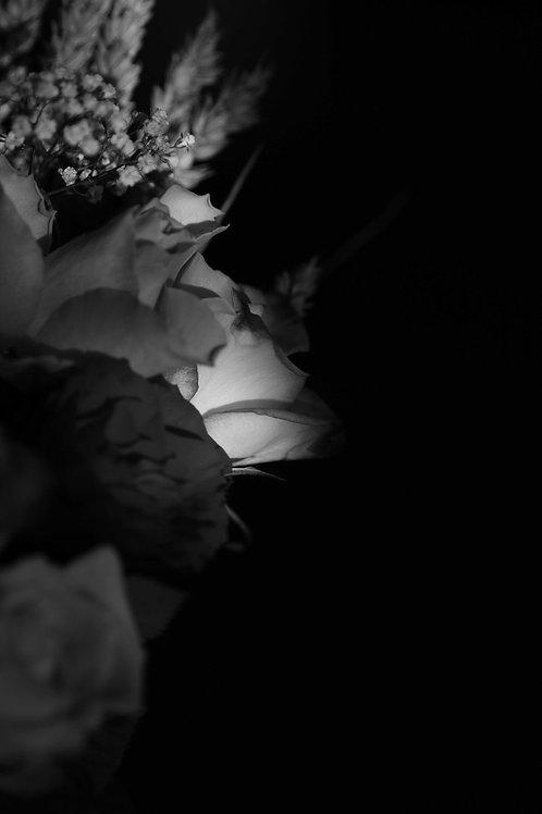 Argentix flowers