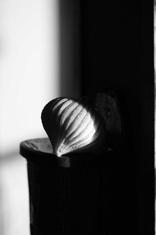 Argentix shell