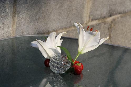 Strawberries on glass