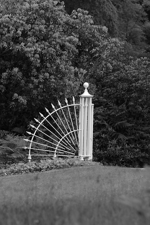 Argentix gate