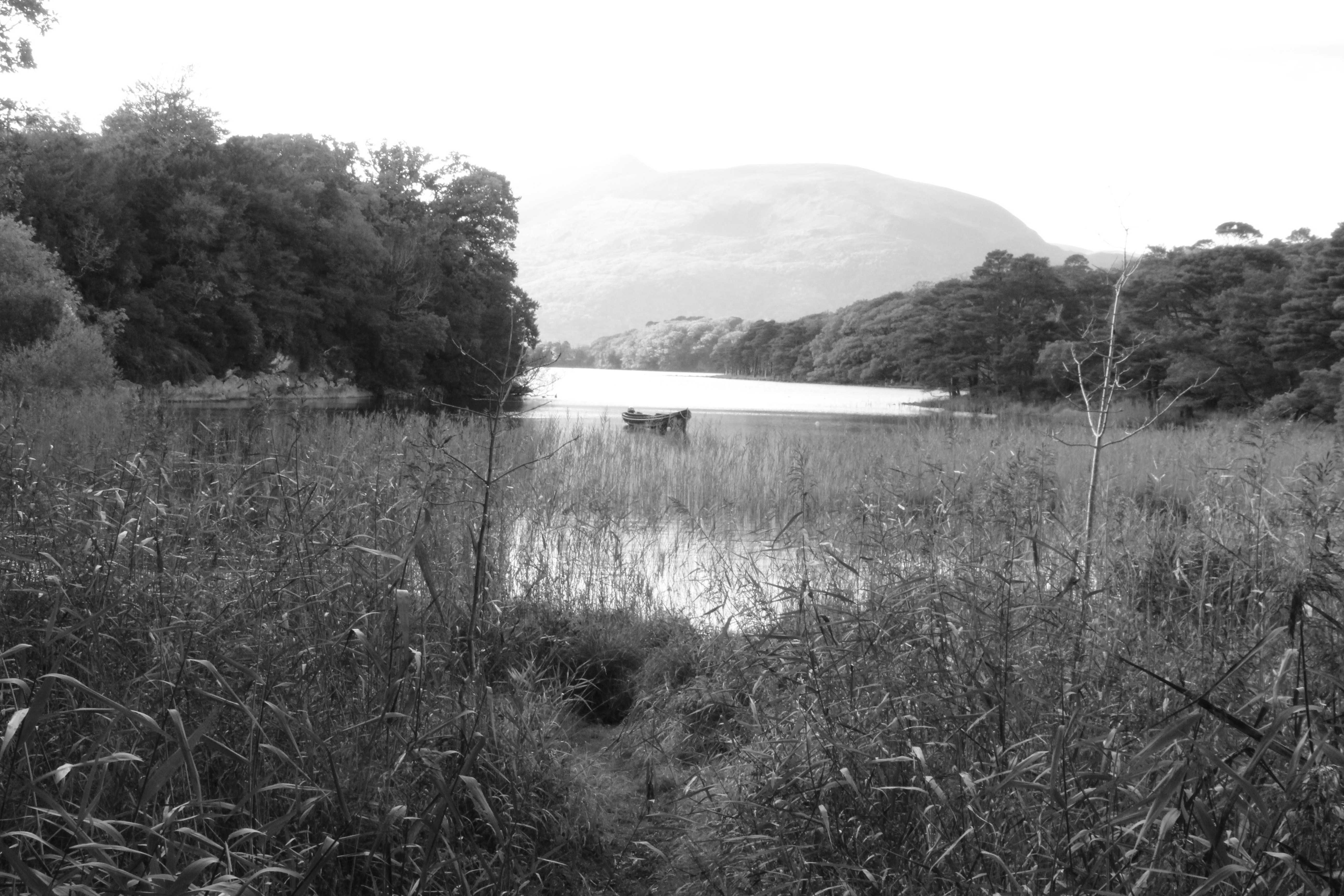 Killarney romanticism