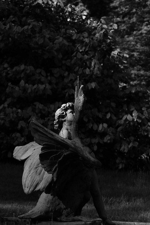 Argentix angel