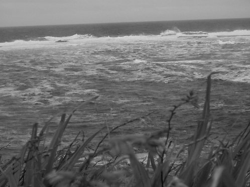 Kilkee and its wildness