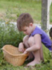 kid foraging.jpeg