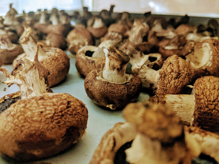 roasted cremini.jpg