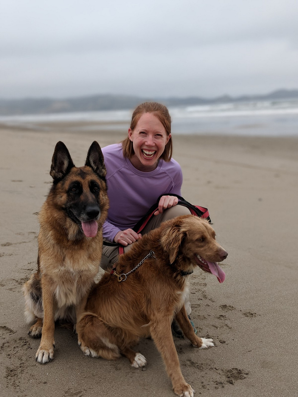 Walking Carly (the German Shepard) and Benny on the beach!
