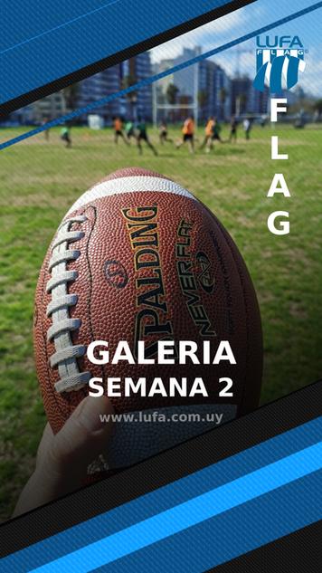 galeriaFlagS2.png