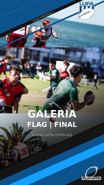 gALERIA_FLAG_FINAL.png
