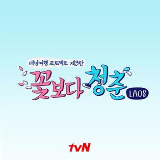 tvN 꽃보다 청춘 그래픽패키지