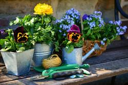 garden-2179530_1280