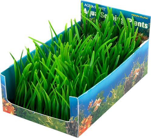 MED HAIRGRASS BUNCH PLT-5PC PDQ