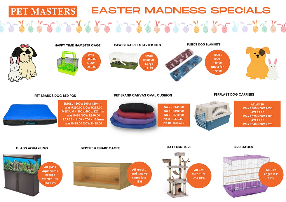 EASTER MADNESS SPECIALS.png