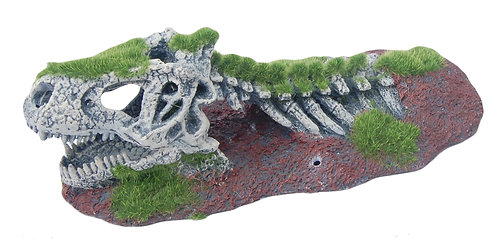 21CM SKULL WITH MOSS