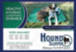 hound sleeper (1).jpg